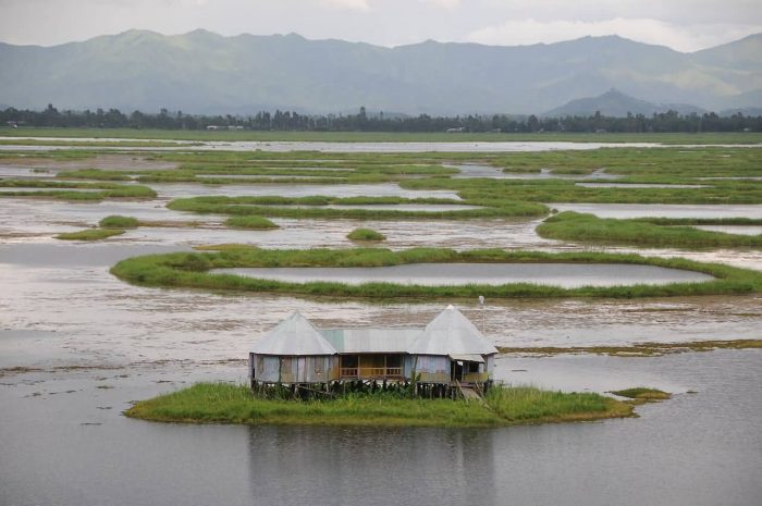 A Home On Loktak Lake