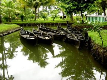 Kerala Boats