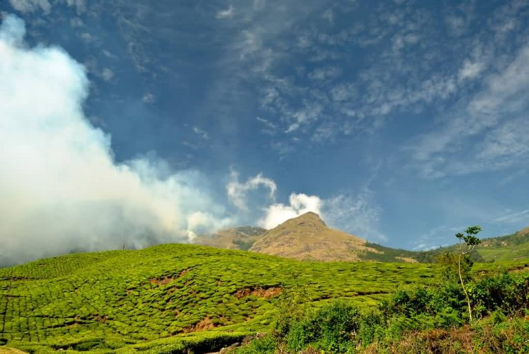 Kolukkumalai Tea Plantations