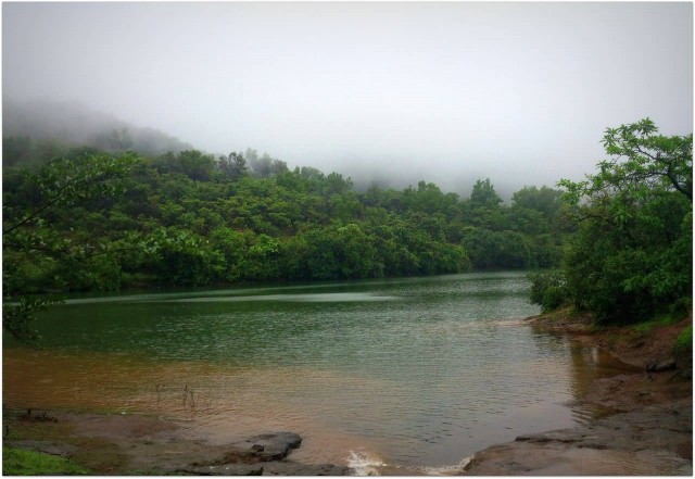 Bhushi Dam, Lonavala