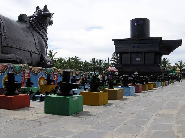 Side View Of Lingam