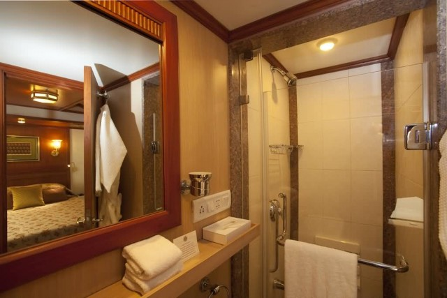 Bathroom In Maharaja Express