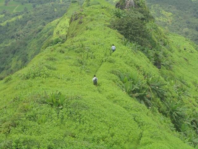 Sahyadri Hills, Treking