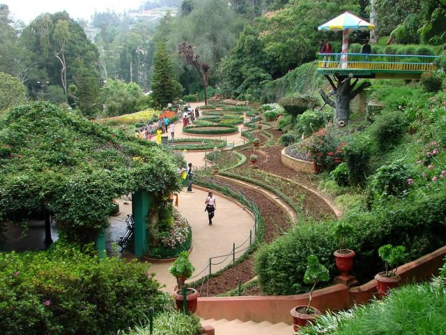 Botanical Gardens Ootacamund