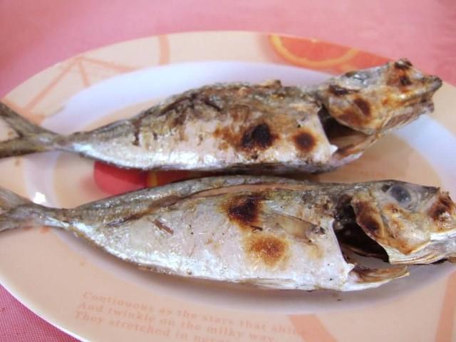 Ikan Tude Bakar