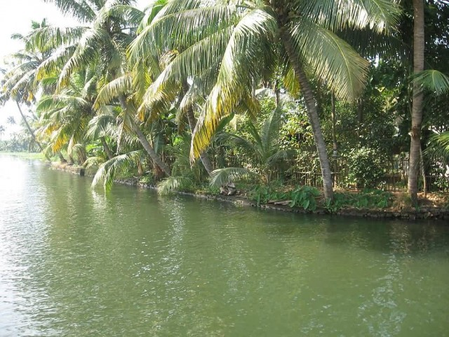 Kerala Backwaters Kuttanad