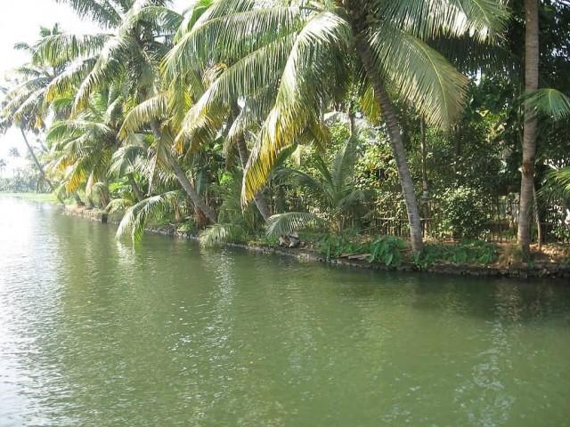 Kerala Backwaters Kuttanad