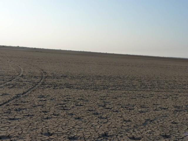 Rann Of Kutch Landscape