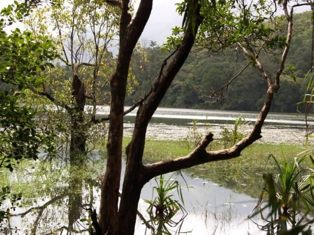 Pookkodu Lake