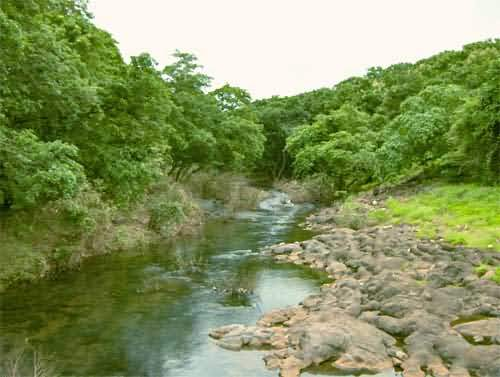 River In National Park