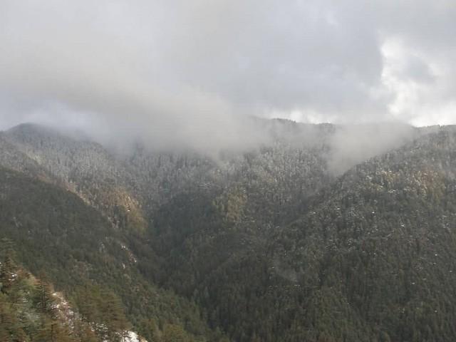 Shimla Hills