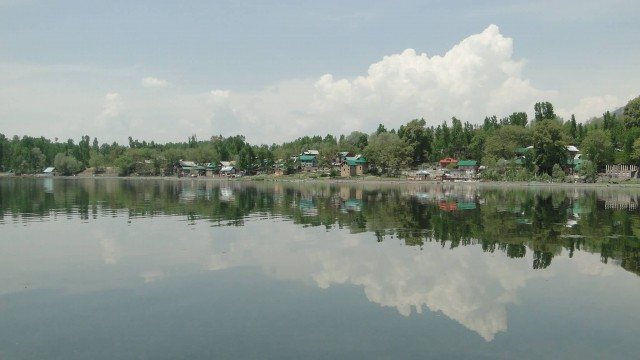 Clear Reflective Water Of Manasbal Lake