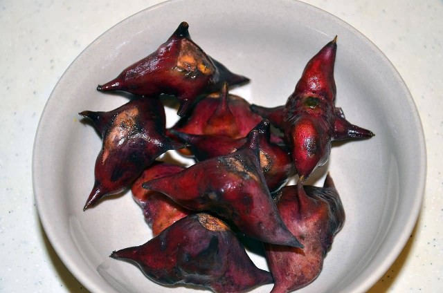 Water Caltrop Seeds
