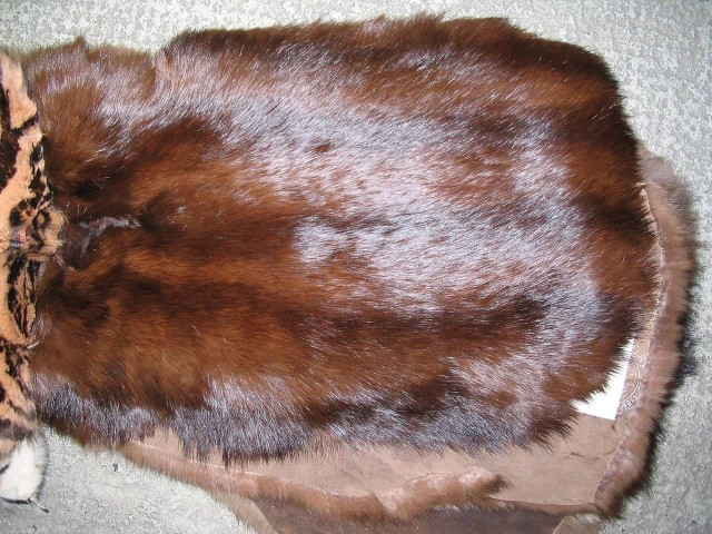 Rabbit Fur Skin