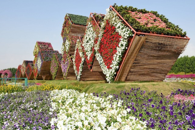 Miracle Garden (Photo Credit: Tim Adams / CC BY 2.0)