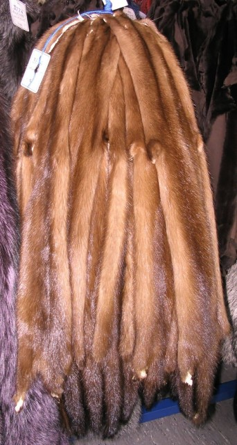 Wild Mink Skins